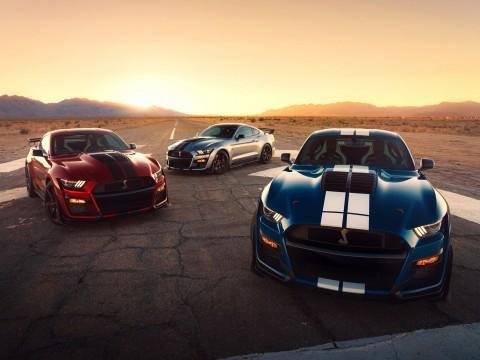 Ford Mustang Shelby GT500  - motogazeta mojeauto.pl